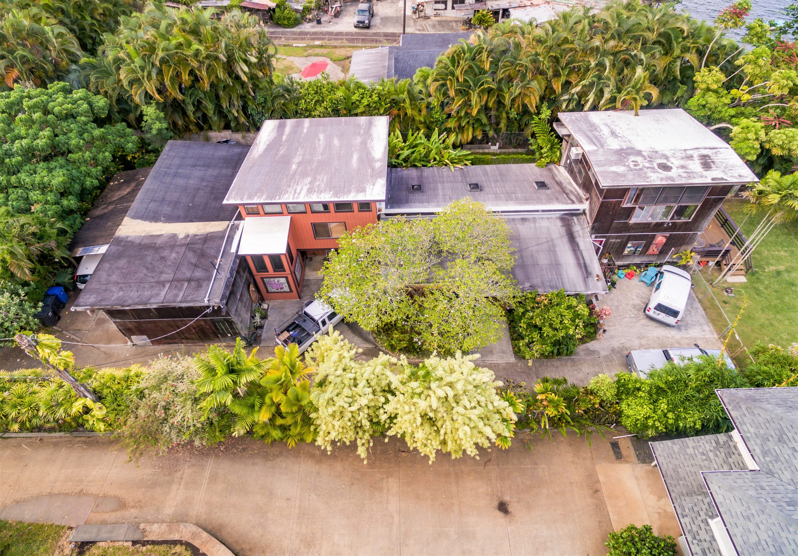 47-849 Kamehameha Hwy-1 (23) orange